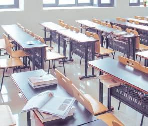 Все школы Воронежской области из-за коронавируса ушли на досрочные каникулы