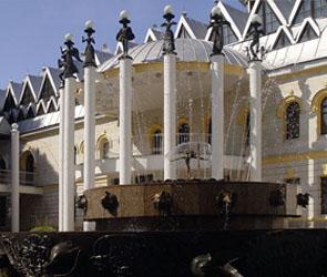Из-за коронавируса в Воронеже два детских театра приостановят работу