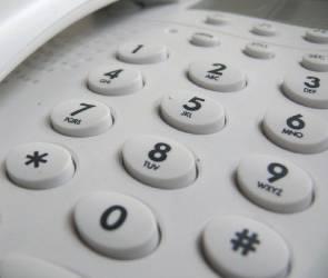На воронежскую «горячую линию» по коронавирусу за неделю поступило 340 звонков