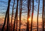 Синоптики: в Воронеже потеплеет только к выходным