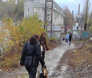 В Воронеже благоустроят тротуар у виадука на Заставе