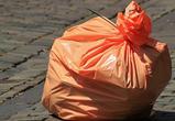 Воронежцам предложили жаловаться на некачественную уборку мусора в соцсетях