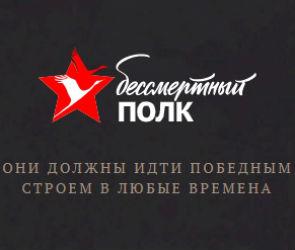 «Прощать нельзя»: общественники Воронежа возмущены атакой на «Бессмертный полк»