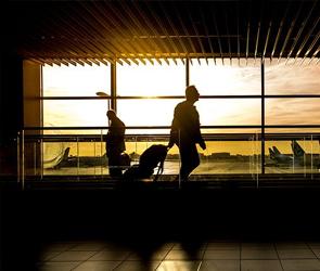 Летом воронежцы смогут улететь в Сочи на чартерных рейсах
