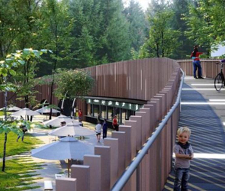 Стало известно, кто продолжит реконструкцию воронежского парка «Орленок»