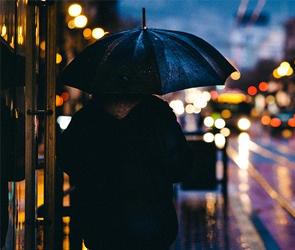 Дожди и грозы ждут воронежцев в последние выходные мая