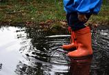 Дожди и грозы пообещали воронежцам синоптики в первую неделю лета