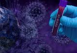 ТФОМС подготовил ответы на часто задаваемые вопросы о коронавирусе