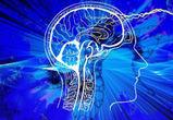 Медики провели психологический онлайн-тренинг для воронежцев