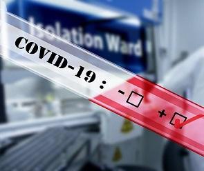В Воронежской области коронавирусом заболели почти 4 тысячи человек