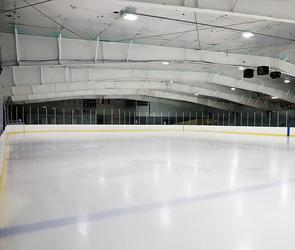 В Воронеже глава хоккейной лиги получил условный срок за мошенничество с грантом