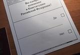 Подведены итоги голосования по поправкам к Конституции в Воронежской области