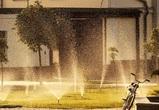 38-градусную жару обещают синоптики в Воронежской области