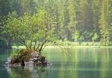 Под Воронежем чиновники незаконно передали в частное владение земли у реки