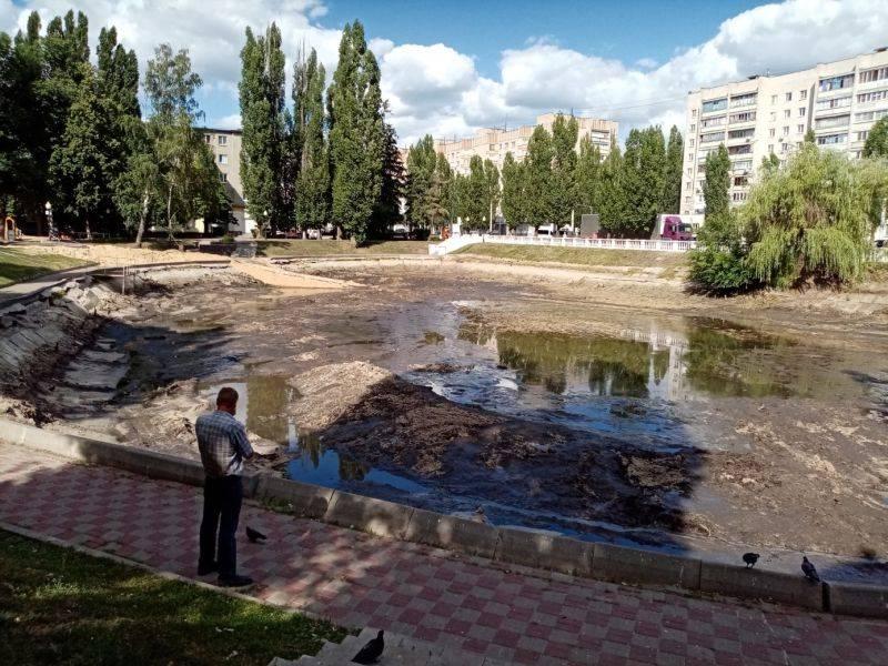 Озеро на Минской улице вновь очищают