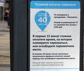 В Воронеже автолюбитель не смог в суде обжаловать штраф за платную парковку