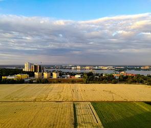 Загадочные круги на пшеничном поле снова обнаружили в Воронеже