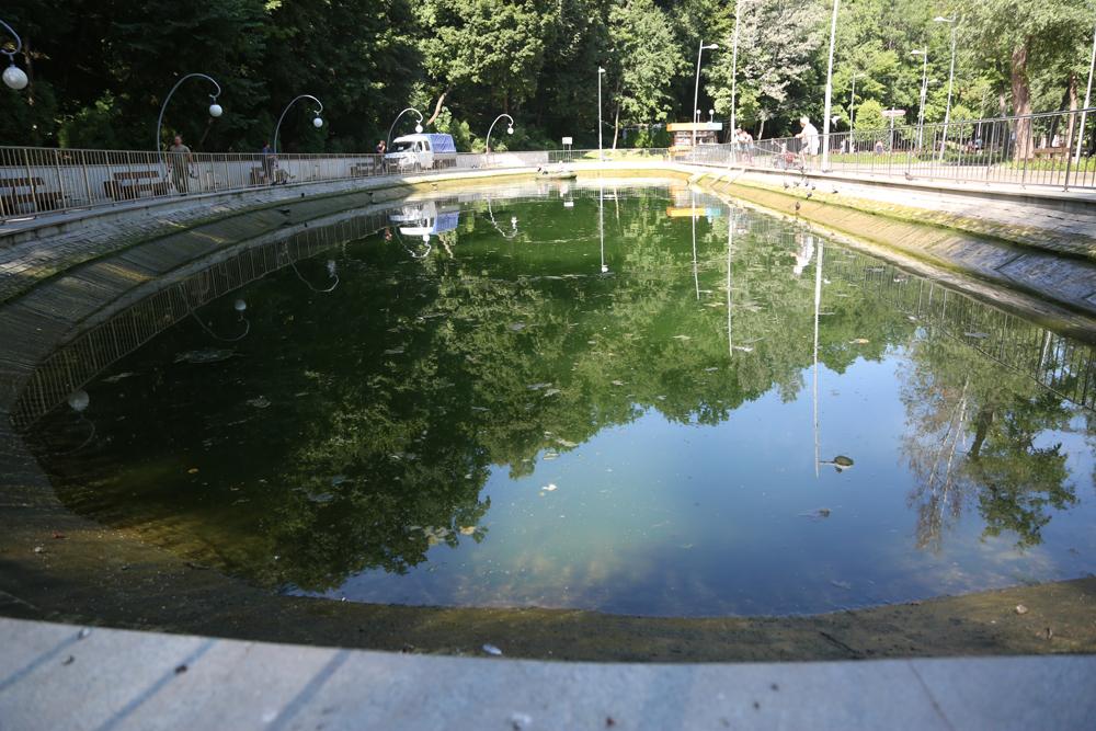 В Воронежском центральном парке очистят озеро
