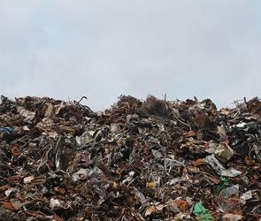 Воронежская прокуратура потребовала убрать из квитанций за мусор «мертвые души»