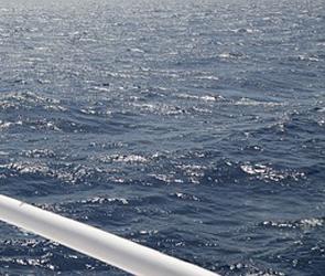 В Воронеже водитель катера спас жизнь едва не утонувшему парню