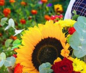 Эксперты посчитали, во сколько обойдется собрать ребенка в школу в Воронеже