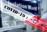 В Воронежской области число заболевших коронавирусом увеличилось на 94 человека