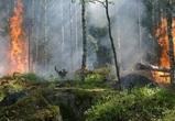В Воронежской области сохранится оранжевый уровень погодной опасности