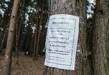 В Воронеже ущерб от вырубки деревьев в Северном лесу оценили в 1 млн рублей