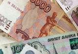 Воронежские полицейские раскрыли мошенничество с грантом на 1 млн рублей