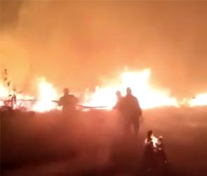 Крупный пожар в Бобровском районе тушили пожарный поезд и самолет: фото и видео
