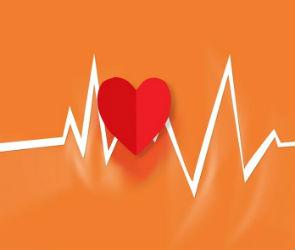 Вся польза кардио: как тренировать сердце
