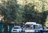 Полоса для общественного транспорта может появиться в Воронеже в 2020 году