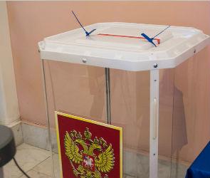 Более 811 тысяч жителей Воронежской области проголосовали на выборах