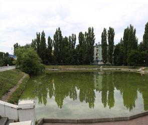 В Воронеже определили подрядчика для ремонта чаши озера в сквере на Минской