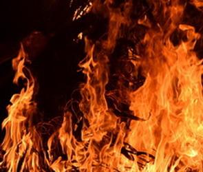 Десять домов сгорели в Новохоперском районе