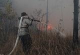 Для тушения пожара в Воронежской области прибыли тульские спасатели