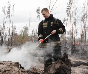 МЧС сообщило о локализации пожара на 130 га в Воронежской области