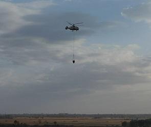 Спасатели потушили последний крупный пожар в Воронежской области
