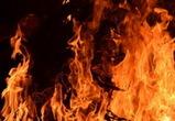 Из-за пожара спасатели эвакуируют санаторий на юге Воронежской области