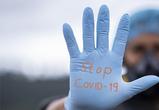 В Воронежской области жертвами коронавируса стали 11 человек