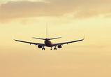 В Москве совершил экстренную посадку самолет из Воронежа