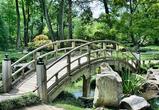 Власти рассказали о концепции преобразования Костенок в туристический парк