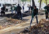 В центре Воронежа появится новый сквер за 10 млн рублей