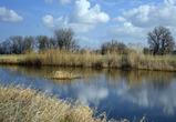 Суд признал незаконной продажу частнику 11,2 га земли на берегу реки Воронеж