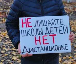 Родители воронежских школьников протестуют против дистанционки