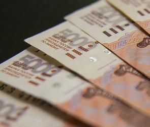 Эксперты выяснили, сколько воронежцев получают «белую» зарплату