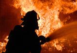 В Воронеже при пожаре в трехквартирном доме погиб мужчина