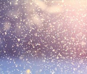 В Воронеже в конце этой недели может выпасть первый снег