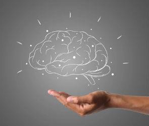 Как сохранить мозг в рабочем состоянии на долгие годы