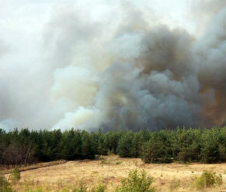 В Воронежской области отменили режим чрезвычайной ситуации